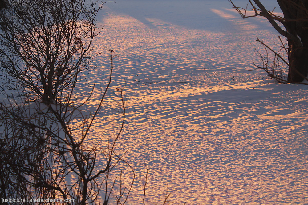 photoblog image Snow Shadows 4