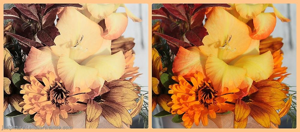 photoblog image Autumn Table