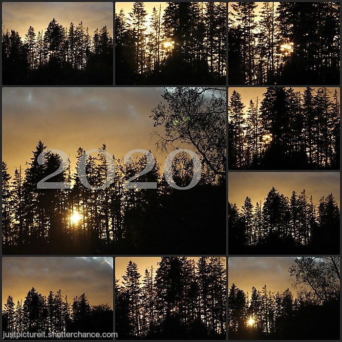 photoblog image Page For New Year 2020text.jpg